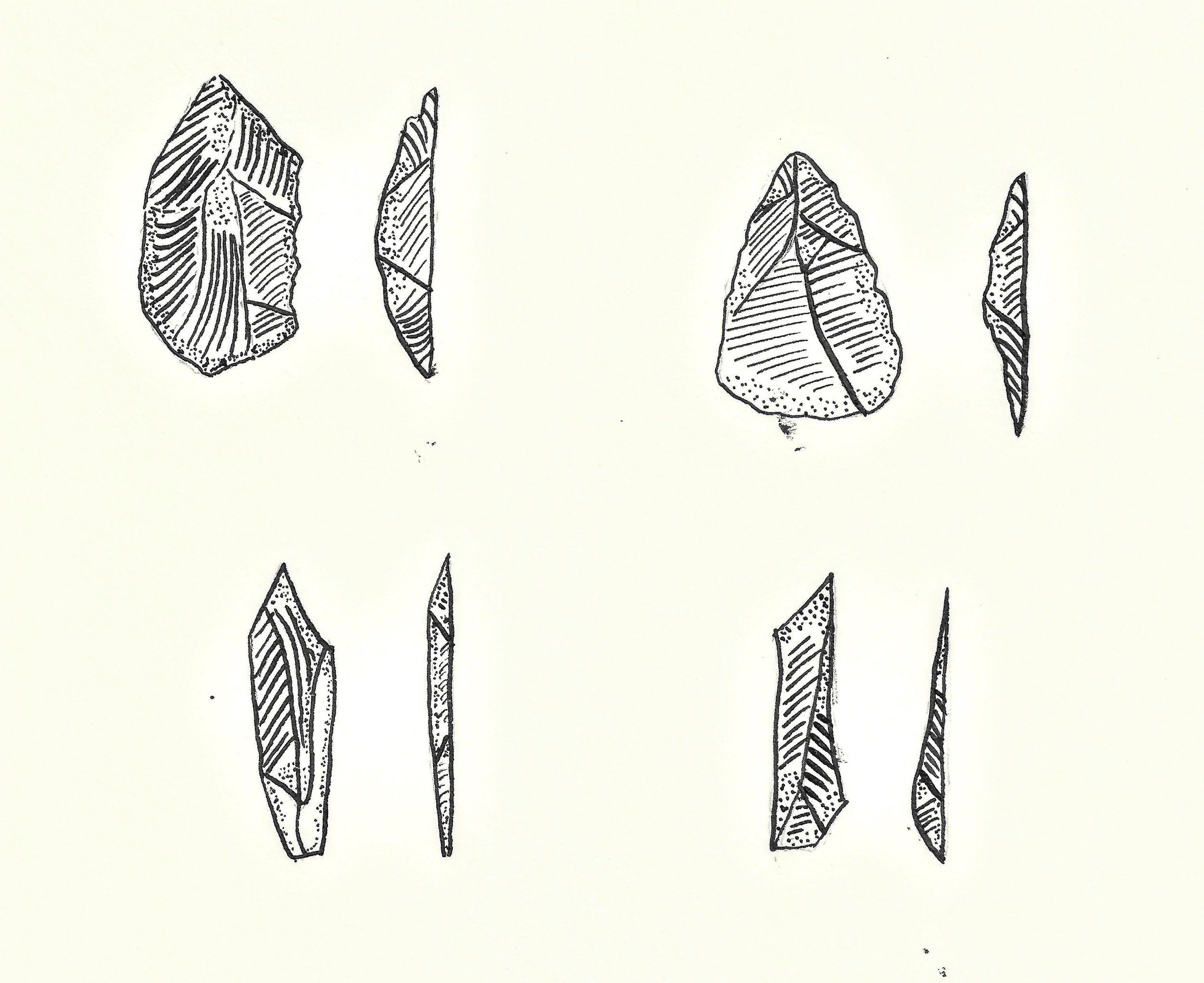 Copy of Copy of As stone tools evolved, they got smaller during the middle palaeolithic period-- a bit like the shrinking sizes of mobile phones and laptops of today.