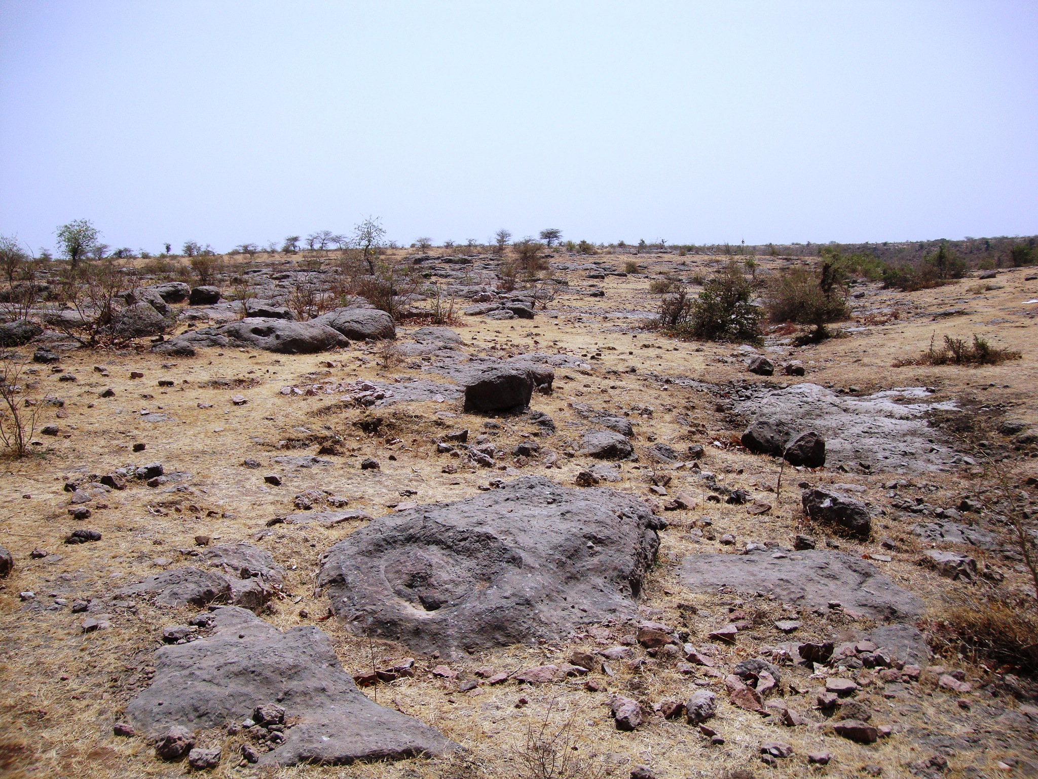 The arid landscape of Dholi Dungri, speckled with rocky outcrops. (Photo courtesy: Dhananjay Mohabey)