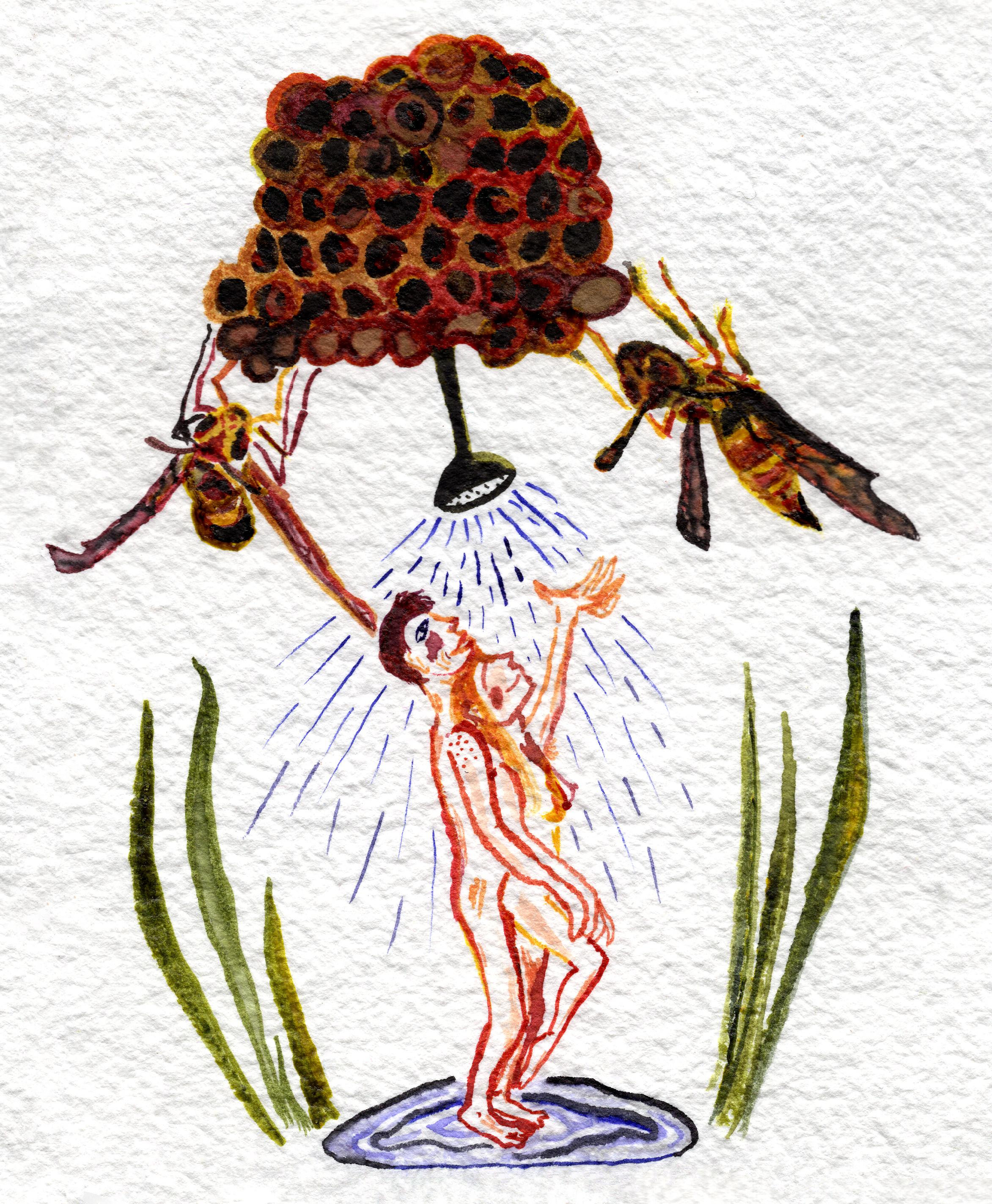 shower with wasps.jpg