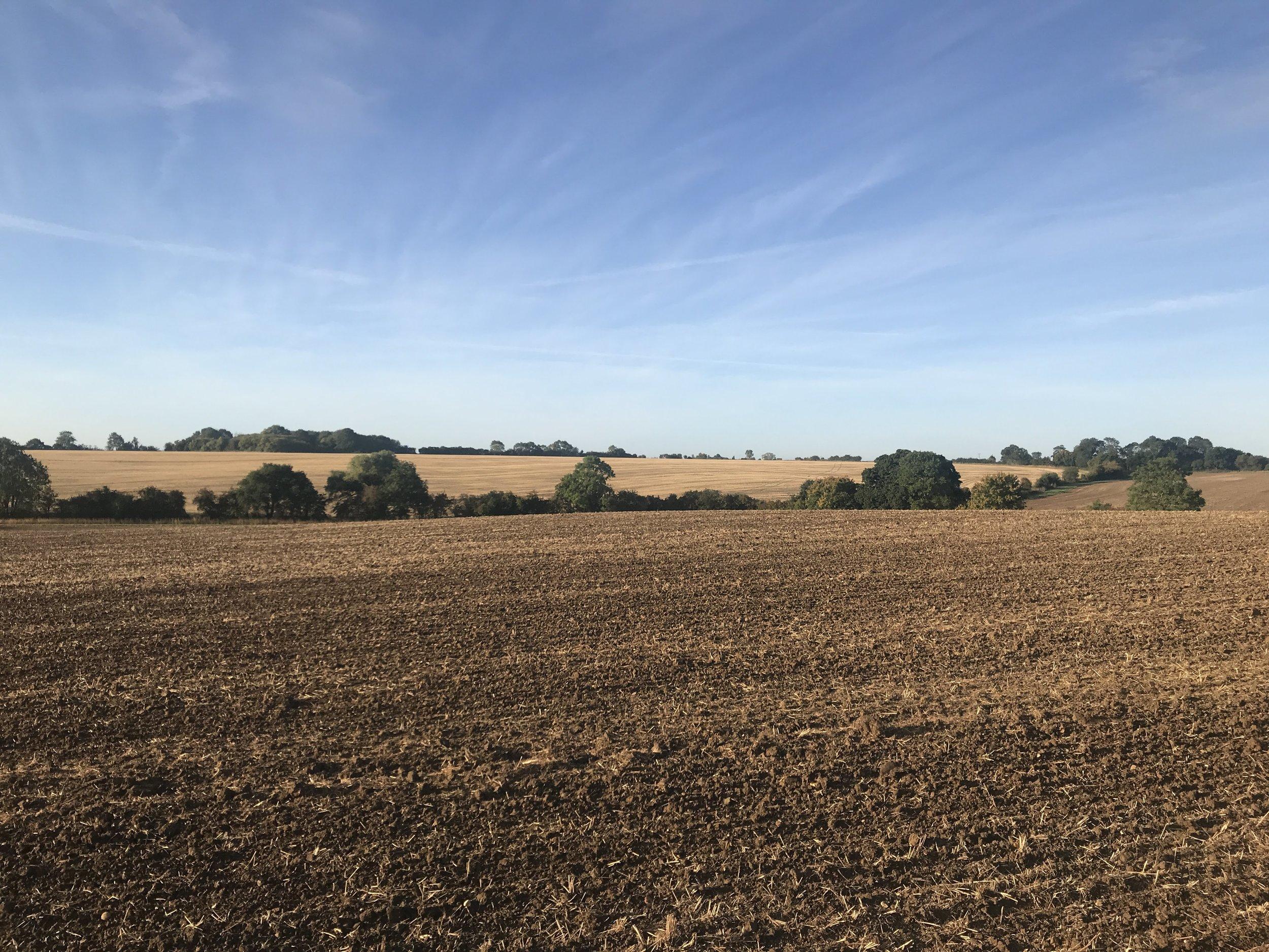 Outfields Farm stunning views