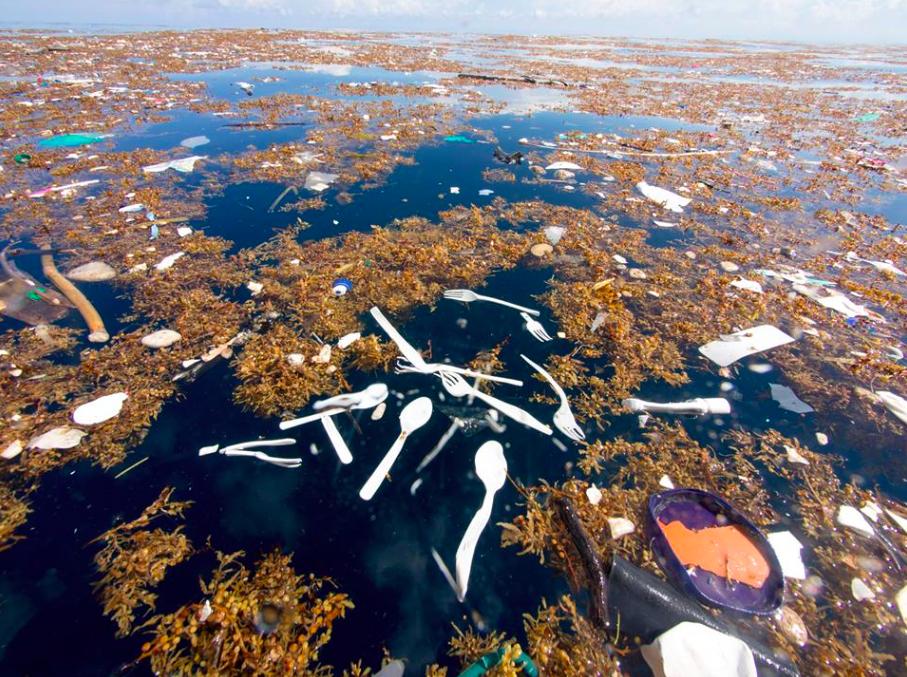 - Plastic pollution in the Caribbean Sea.