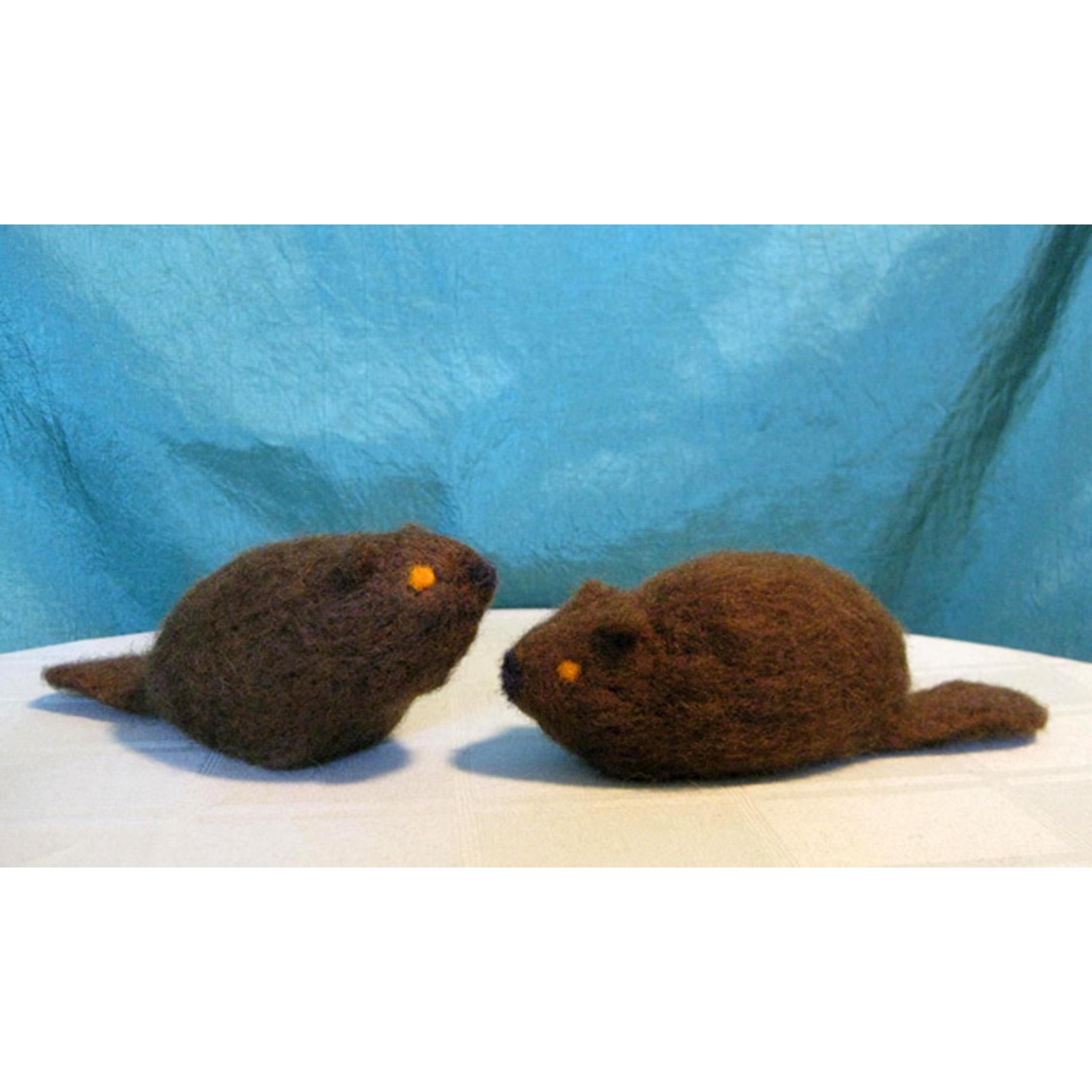 adam-tales-beaver-1.JPG