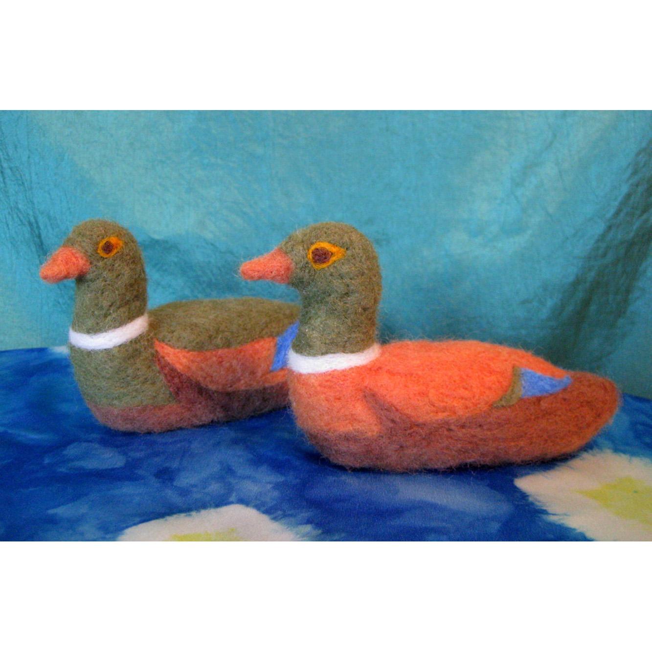 adam-tales-ducks-1.JPG