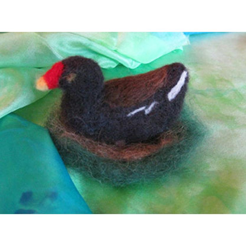 Henrietta the Moor Hen