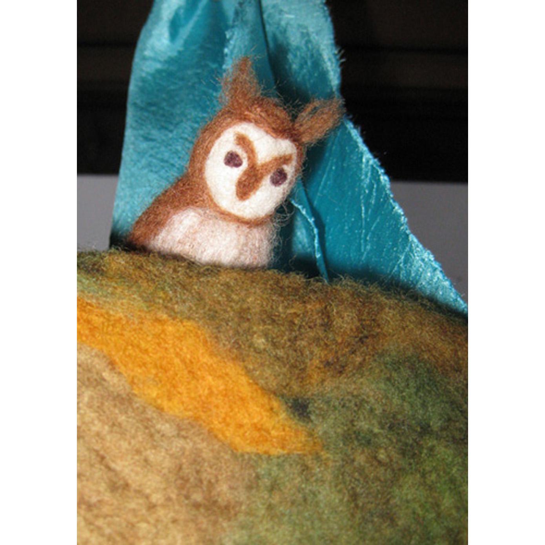 Mr Owl at night