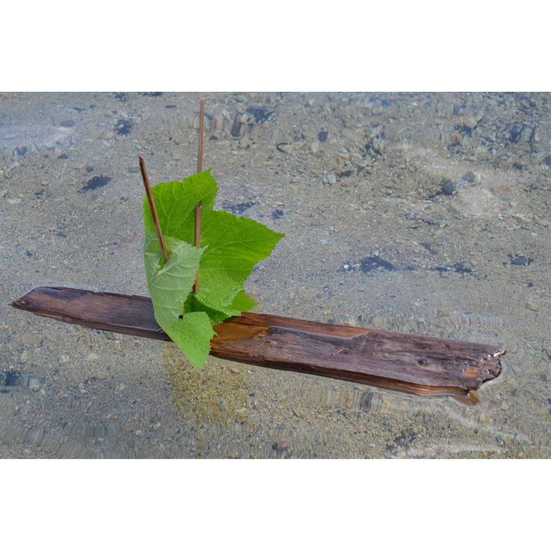 Tiptoes Lightly's leaf boat.