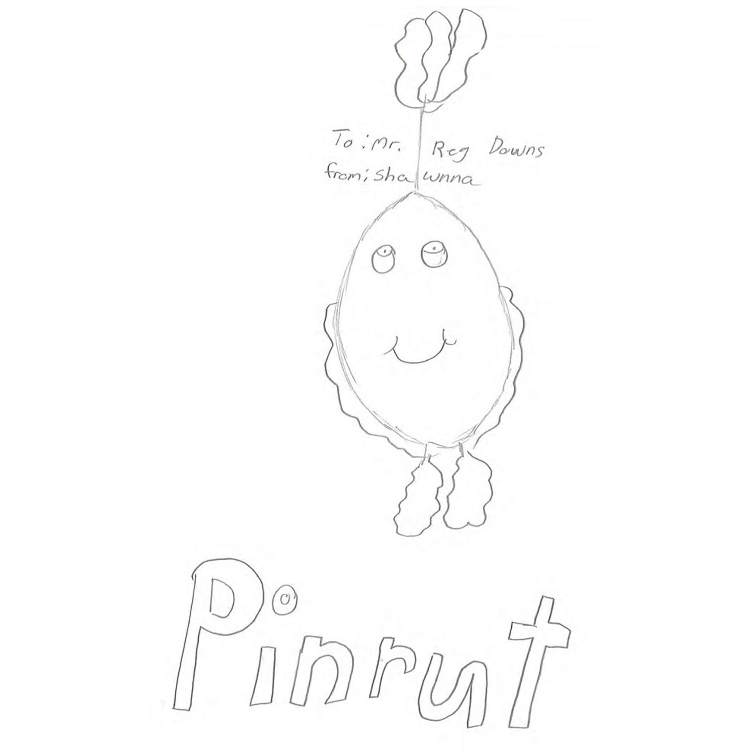 Pinrut the Turnip Boy