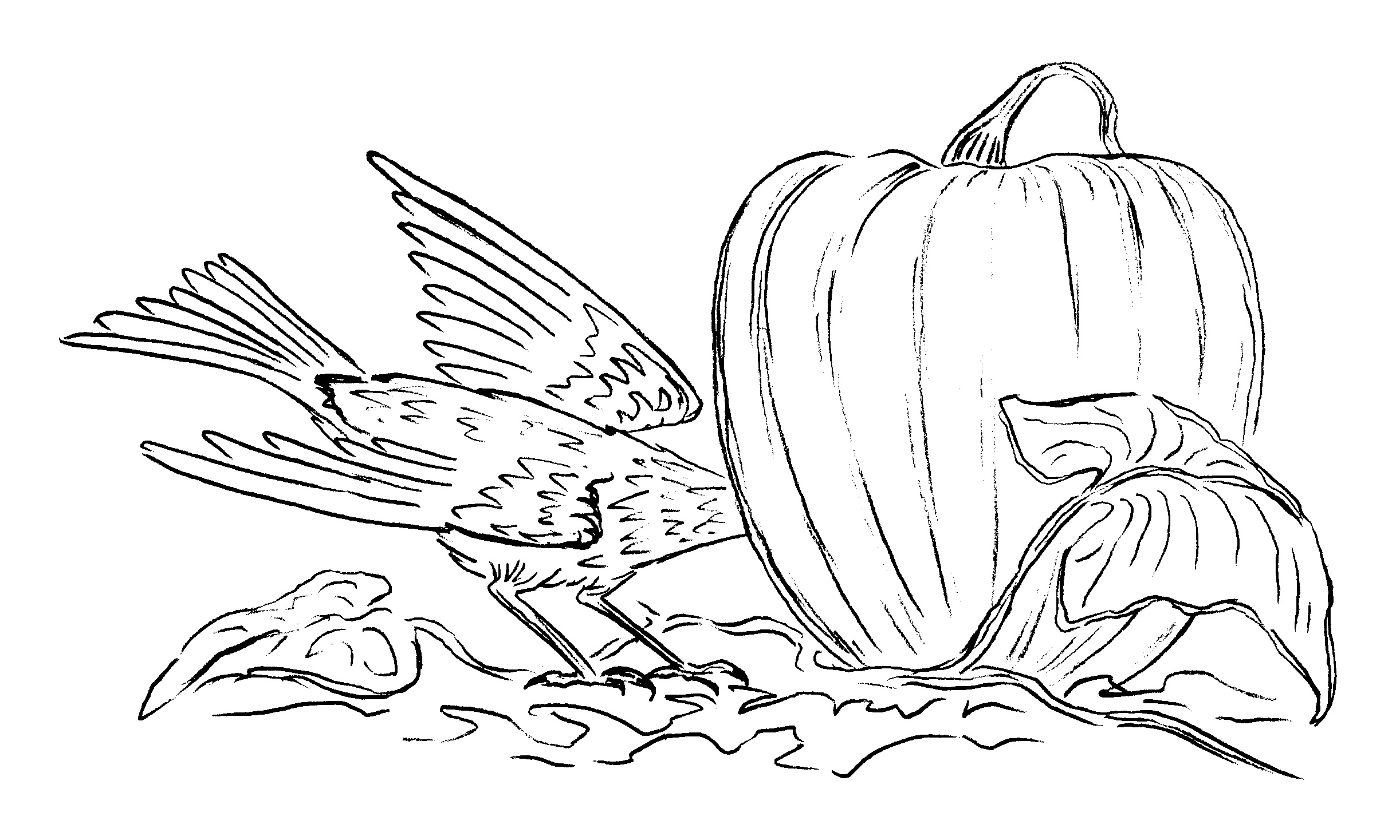 PumpkinCrow-w-head-in.jpg