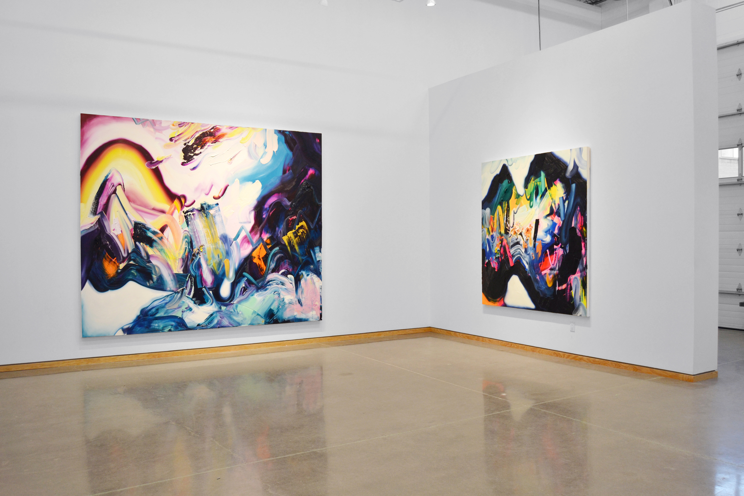 Installation view,  Midnight Bloom , Angell Gallery, Toronto, January 2016 / ©ErinLoree