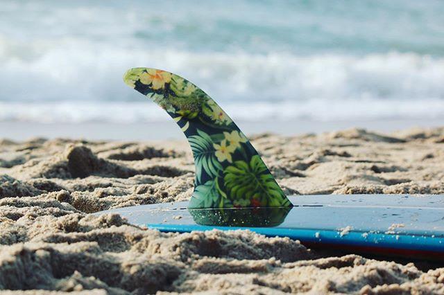 Moin! Bevor es nächste Woche an der @buhne16 beim Longboardfestival für uns alle rund geht, starten wir morgen unseren Club Contest um 13 Uhr am Brandenburger Strand. Btw., die Buhne versorgt uns auch in diesem Jahr wieder mit richtig tollen Preisen. Vielen lieben Dank für eure unermüdliche Unterstützung 🌻💙 ~~~~~~~~~~~~~~~~~~~~~~~~~~ #buhne16 #clubcontest #sylt #inselliebe #longboardfestival #strand #meer #nordsee #singlefin