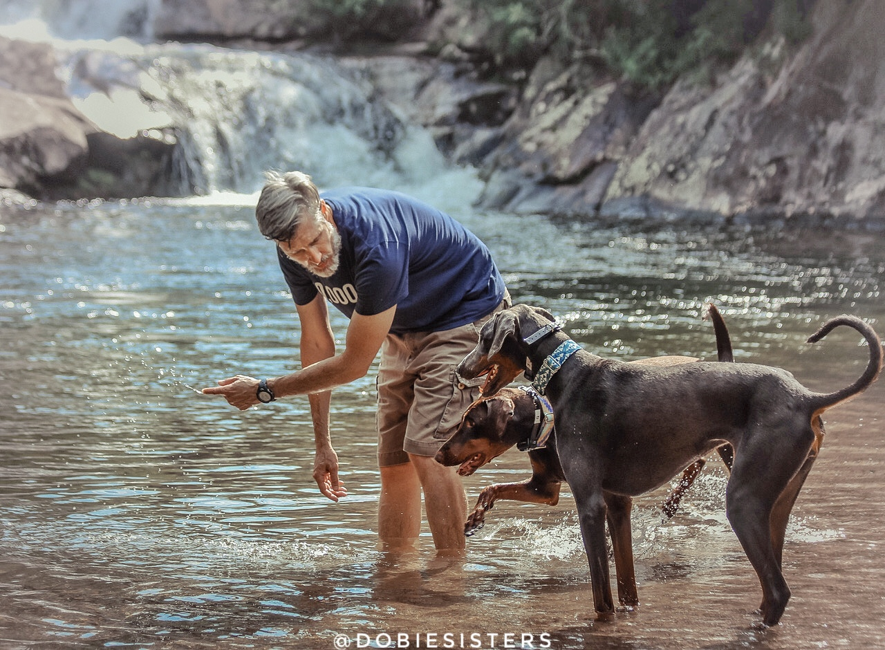richard - Richard is the Dobie Sisters dad.  Richard's childhood dog, Blueberry, was a Dobie-mix, and he's loved the breed ever since.  As an incredibly busy healthcare executive, Richard enjoys being able to relax and hike with the Dobie Sisters whenever possible, allowing nature to help him