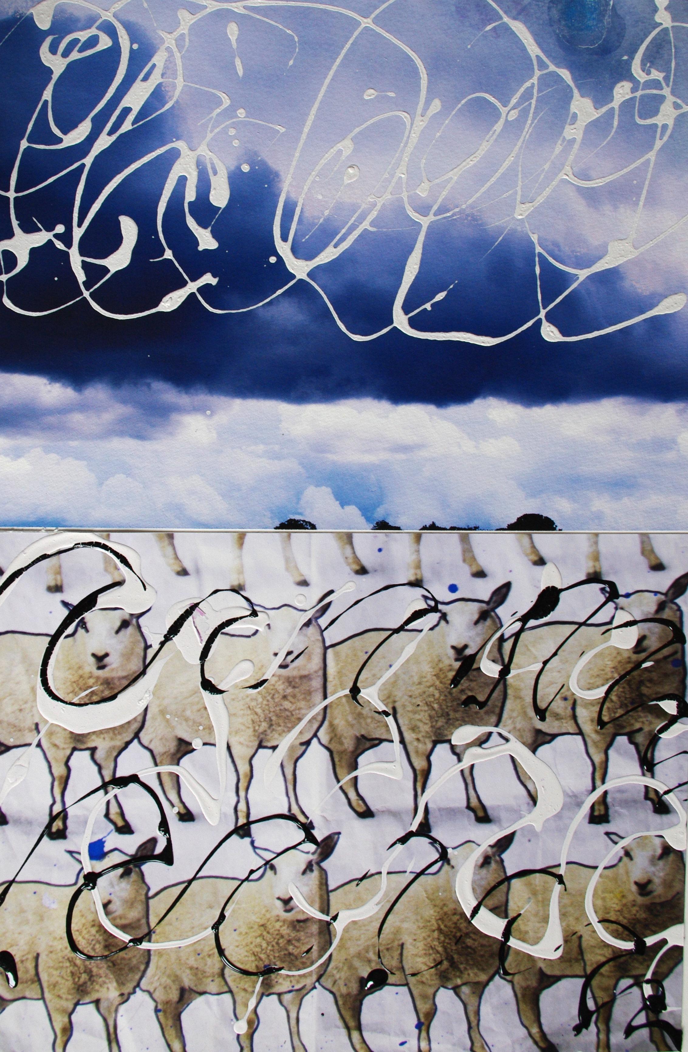 Sheep 2014