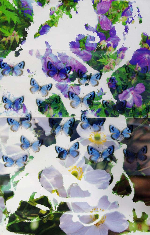 small blue.jpg
