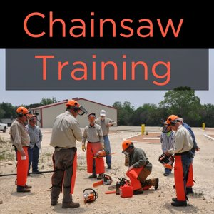 Chainsaw+Training.jpg
