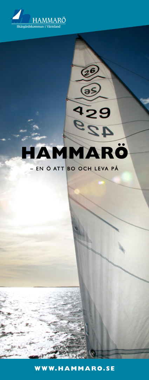 Rollup_Hammaro.jpg