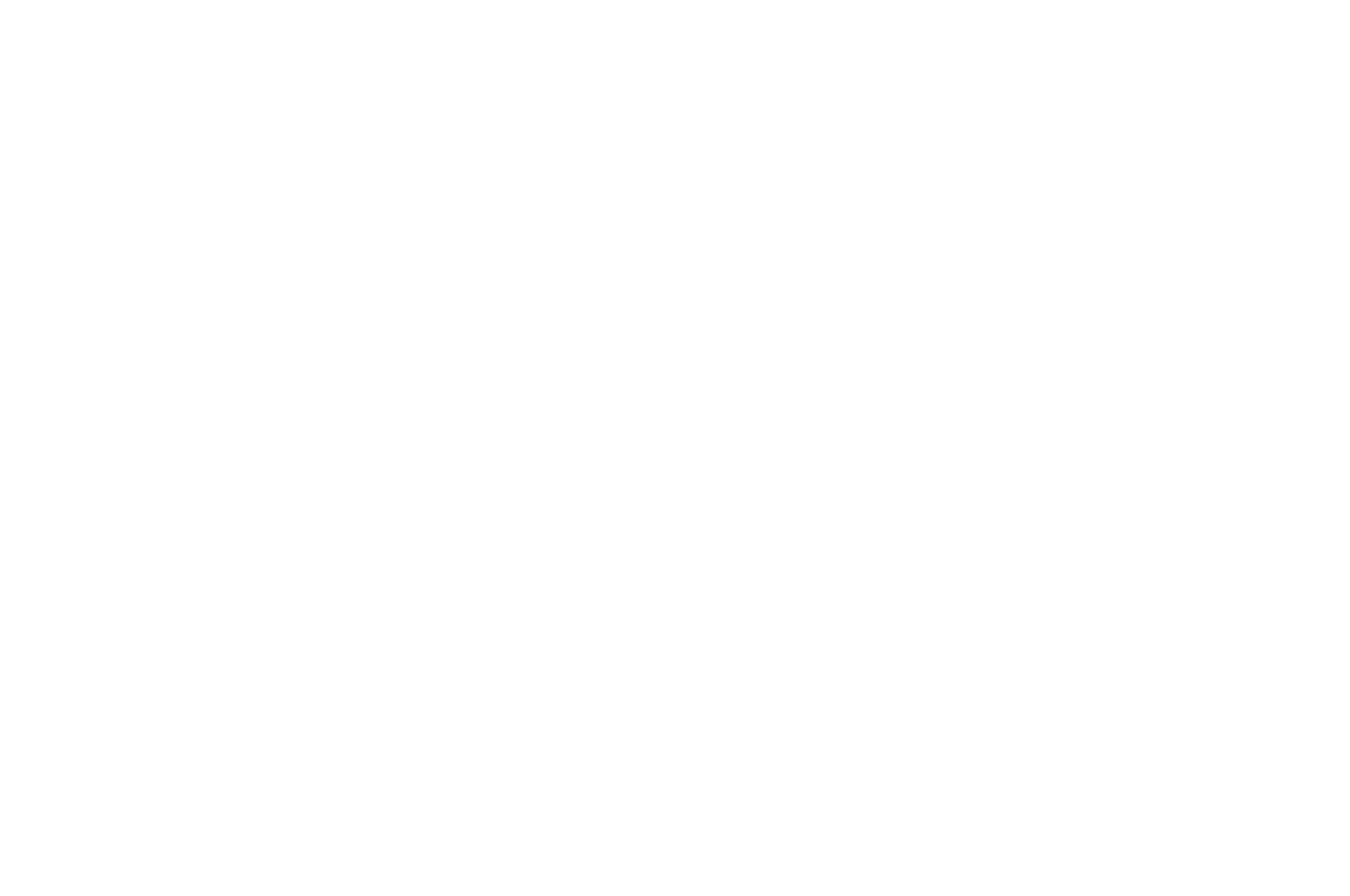 OFFICIAL SELECTION - Central Alberta Film Festival - 2018 (1).png