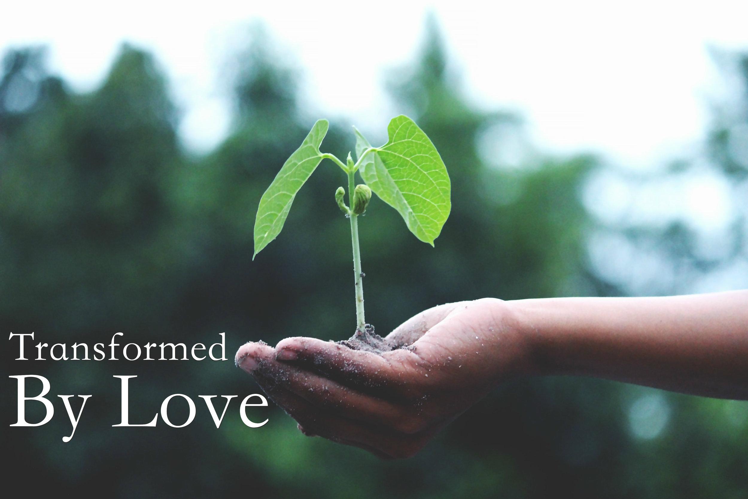 transformed by love 2.jpg