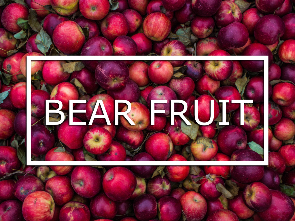 Bear Fruit Series Slide.001.jpeg