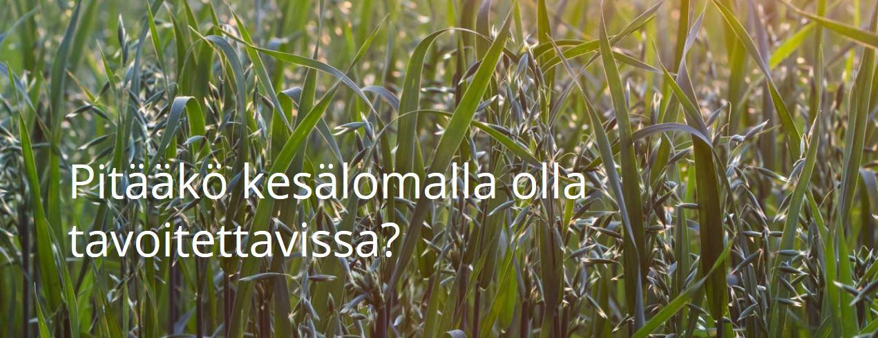 Kuva Reflectorin blogista www.reflector.fi/blog