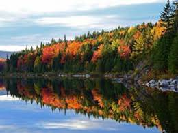 Fall foliage reflection.jpg