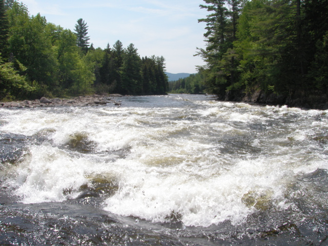 Kennebec River.JPG