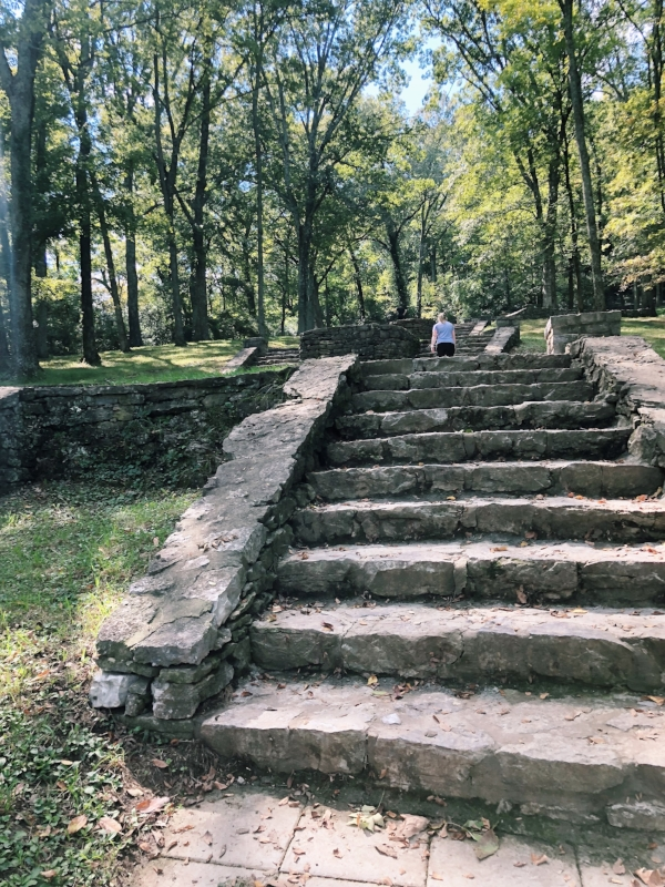 Walkings, joyful movement, stairs, hiking, mental health