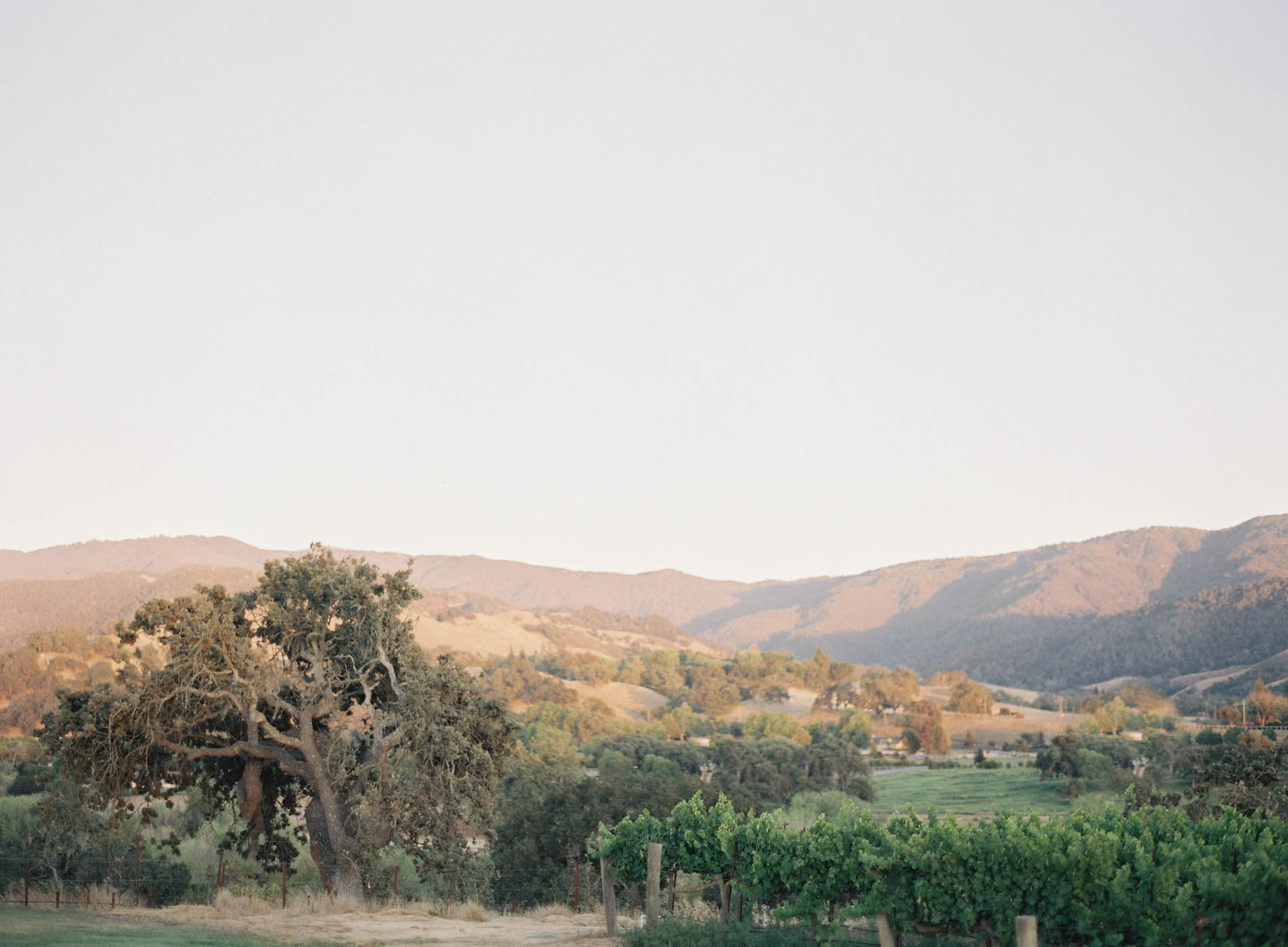 Sunstone-Villa-Wedding-30.jpg