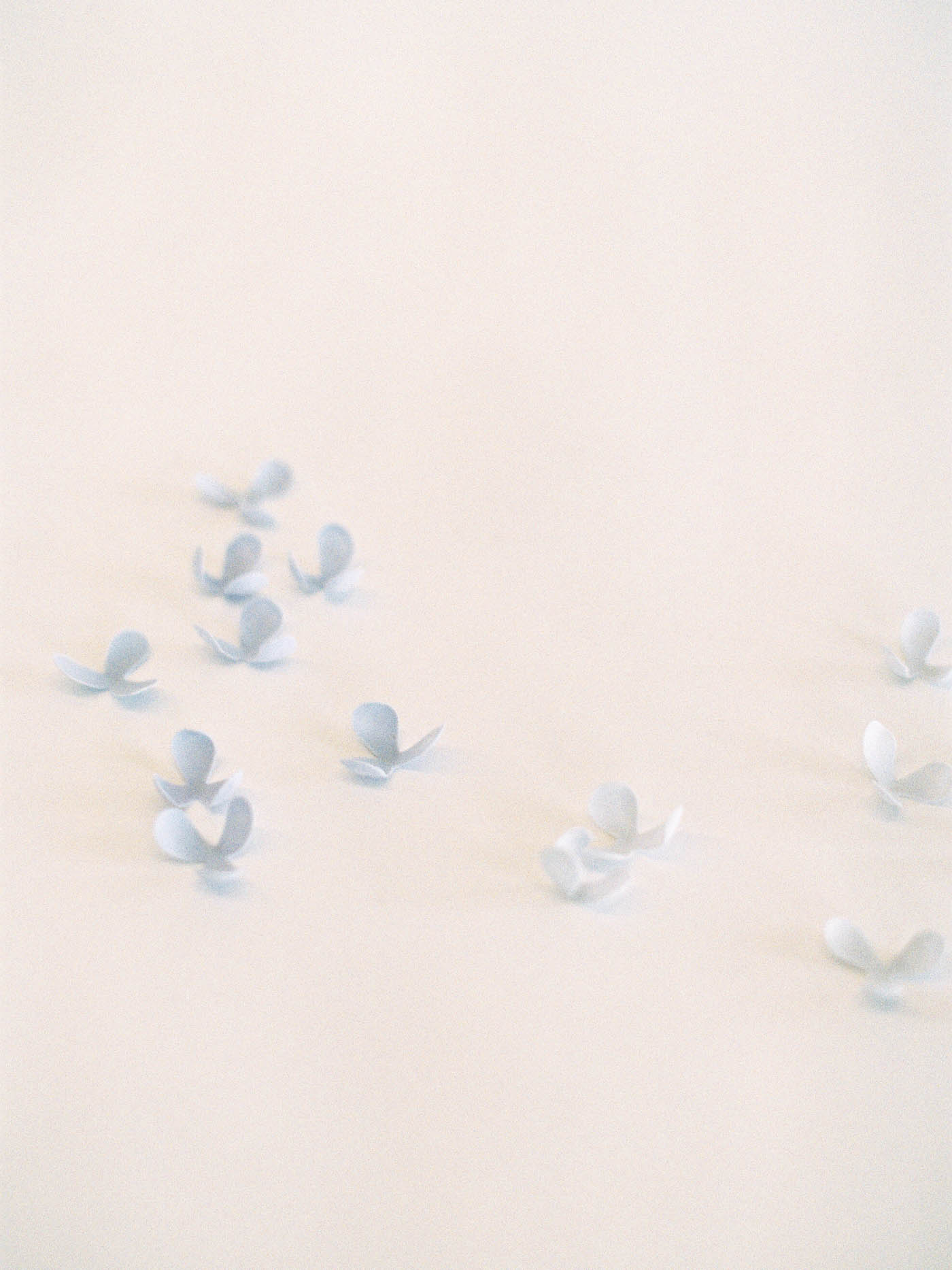 Delicate-Wedding-Cakes-17-Jen_Huang-002344-R1-035.jpg