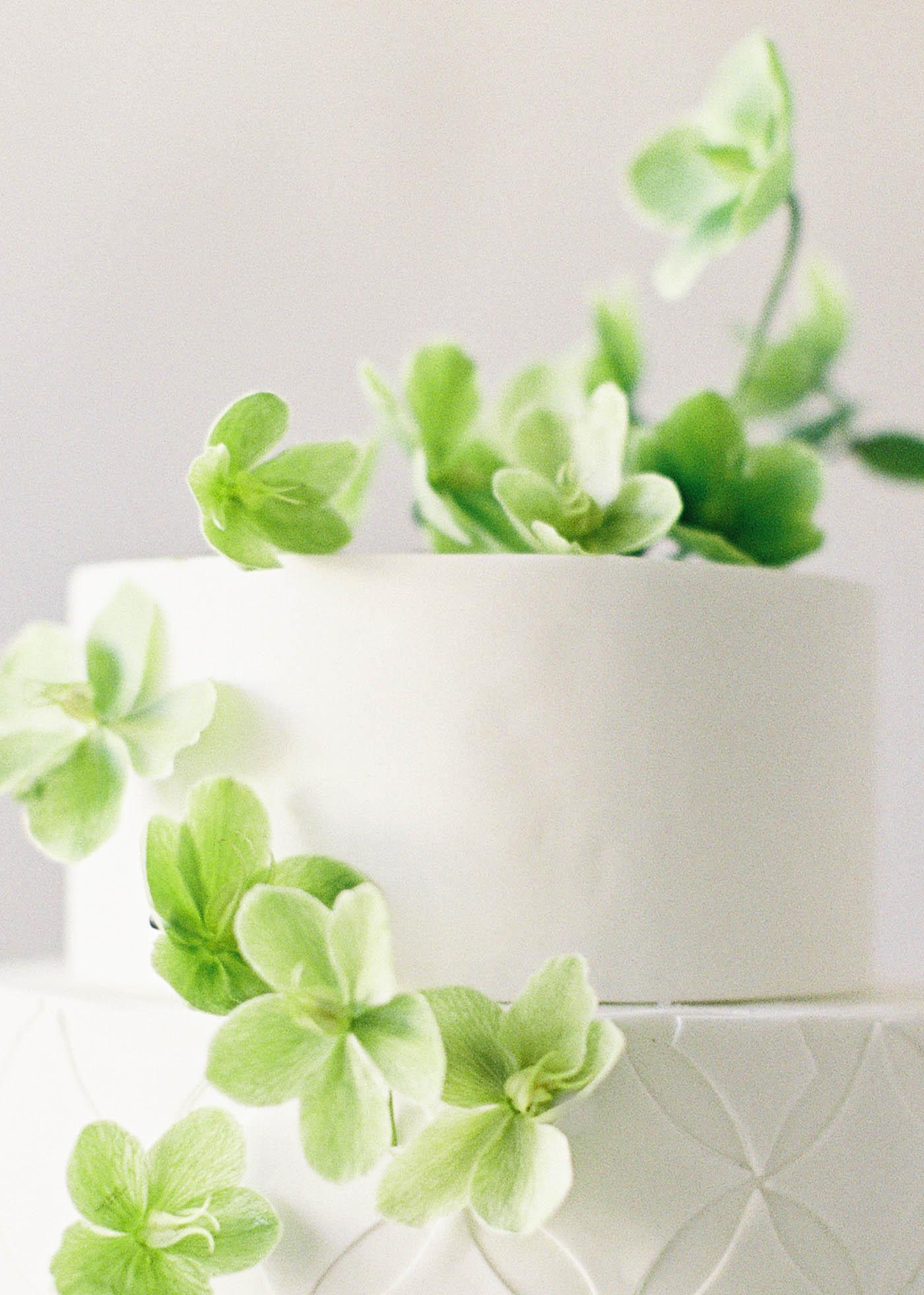 naturalist-cakes-10-Jen_Huang-000486-R1-049-23.jpg