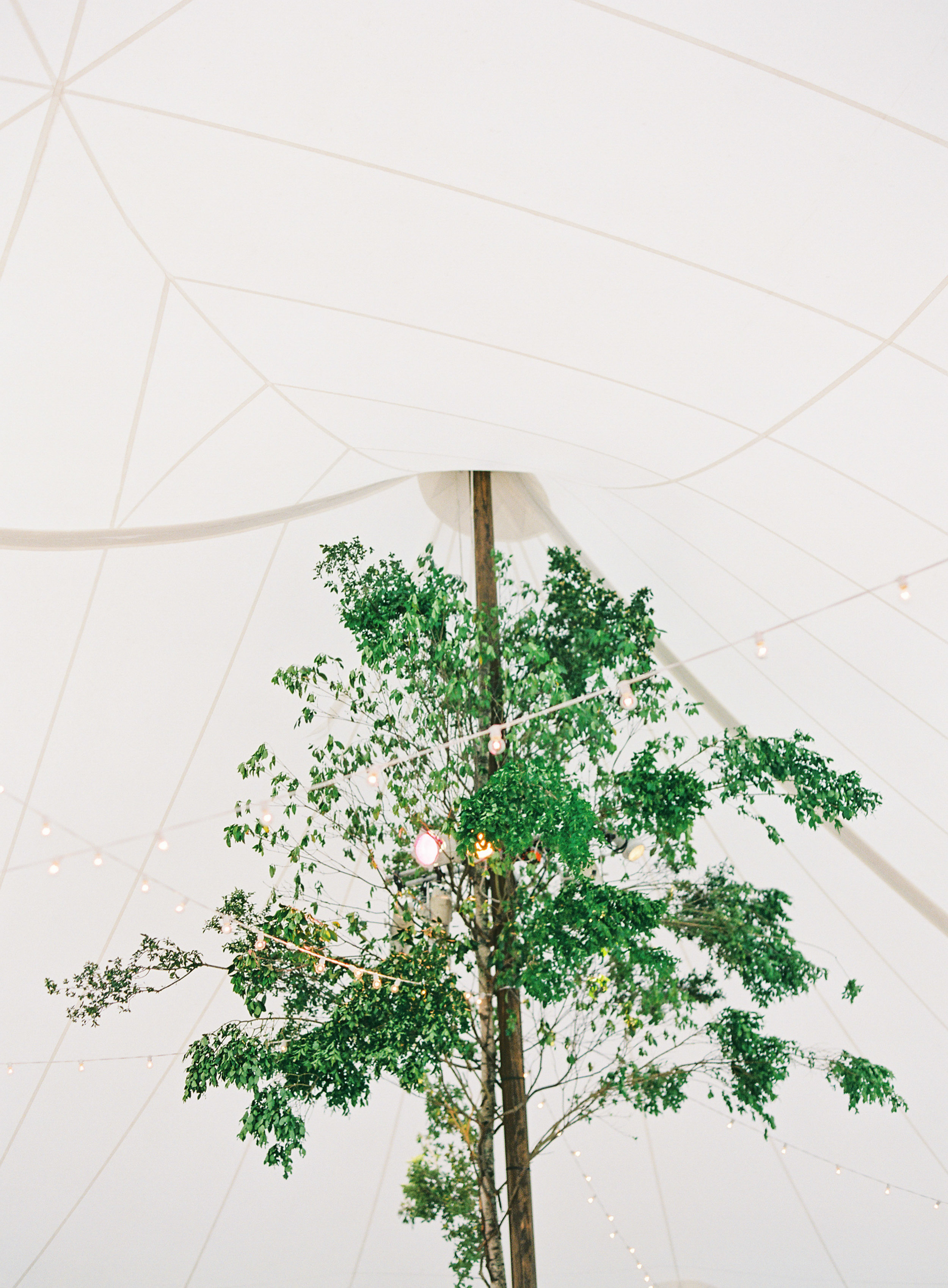 Ankony_Farm_Wedding-241-Jen-Huang-AS-294-Jen-Huang-003140-R1-016.jpg