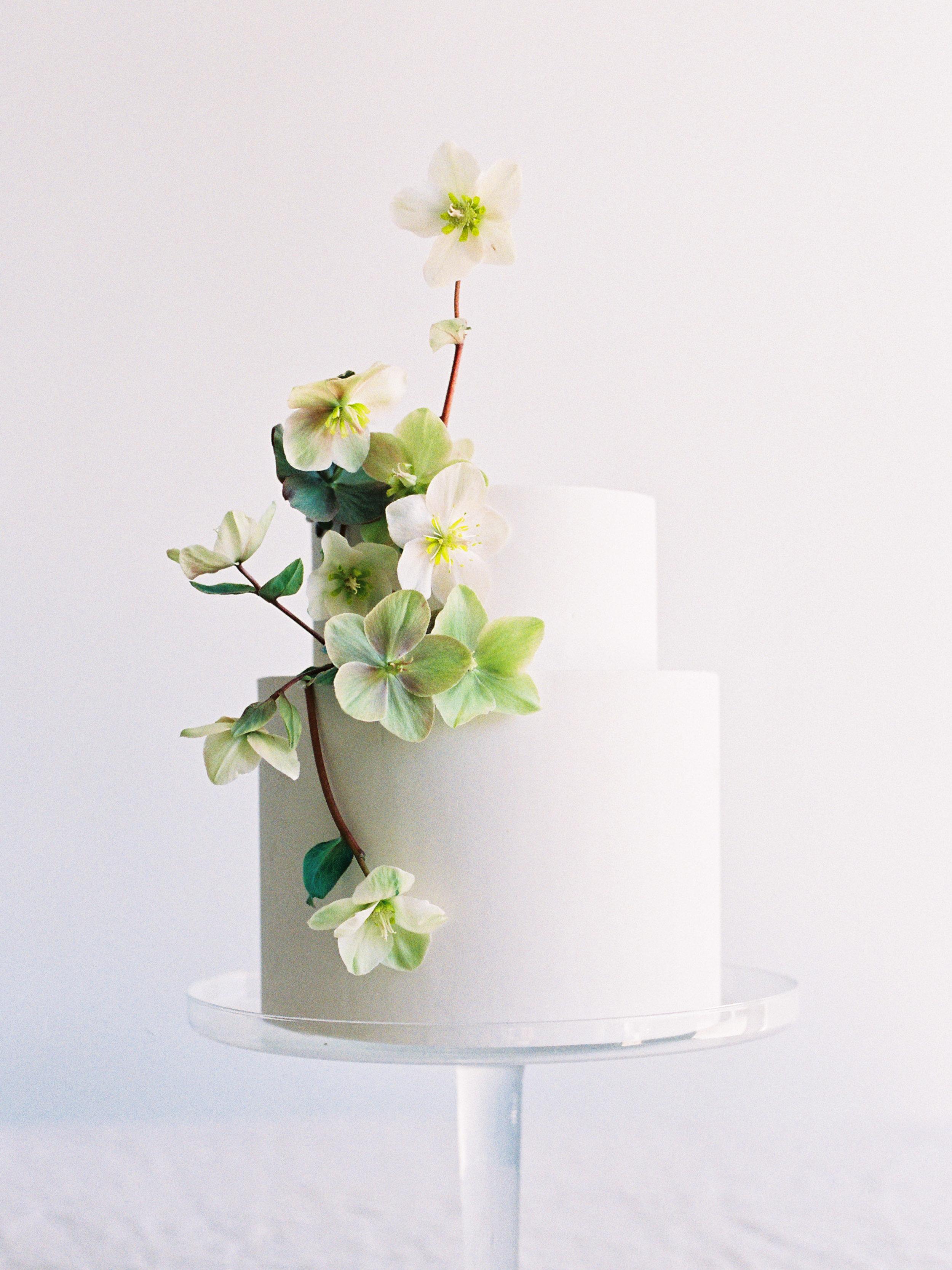 Seasonal Cakes - Studio MondineNine Cakes