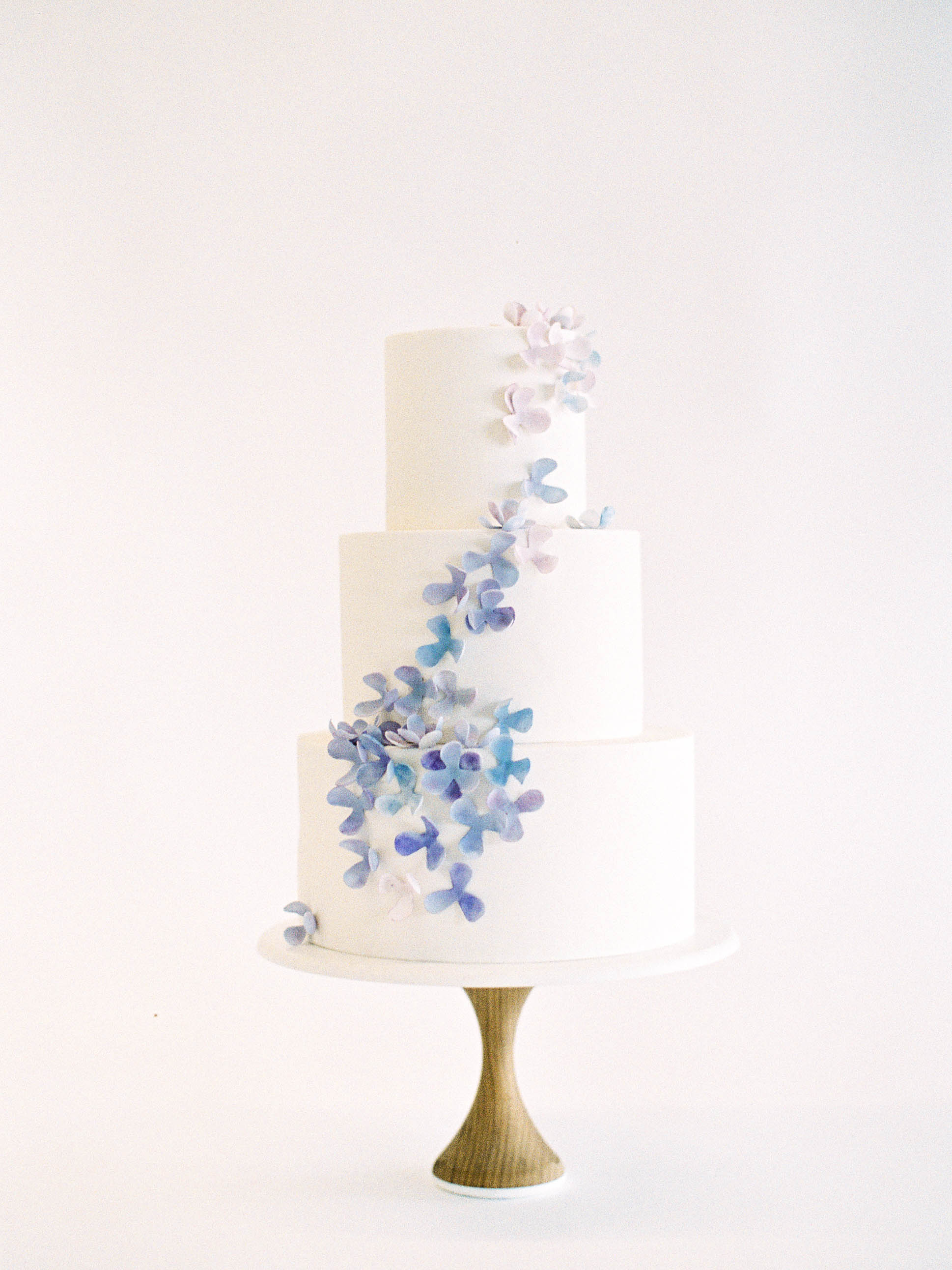 Delicate Cakes - Nine Cakes