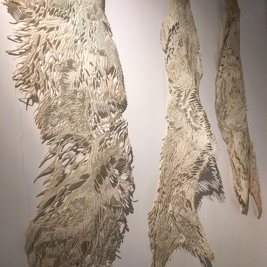 Ilya Romanov and his linoleum lace wings