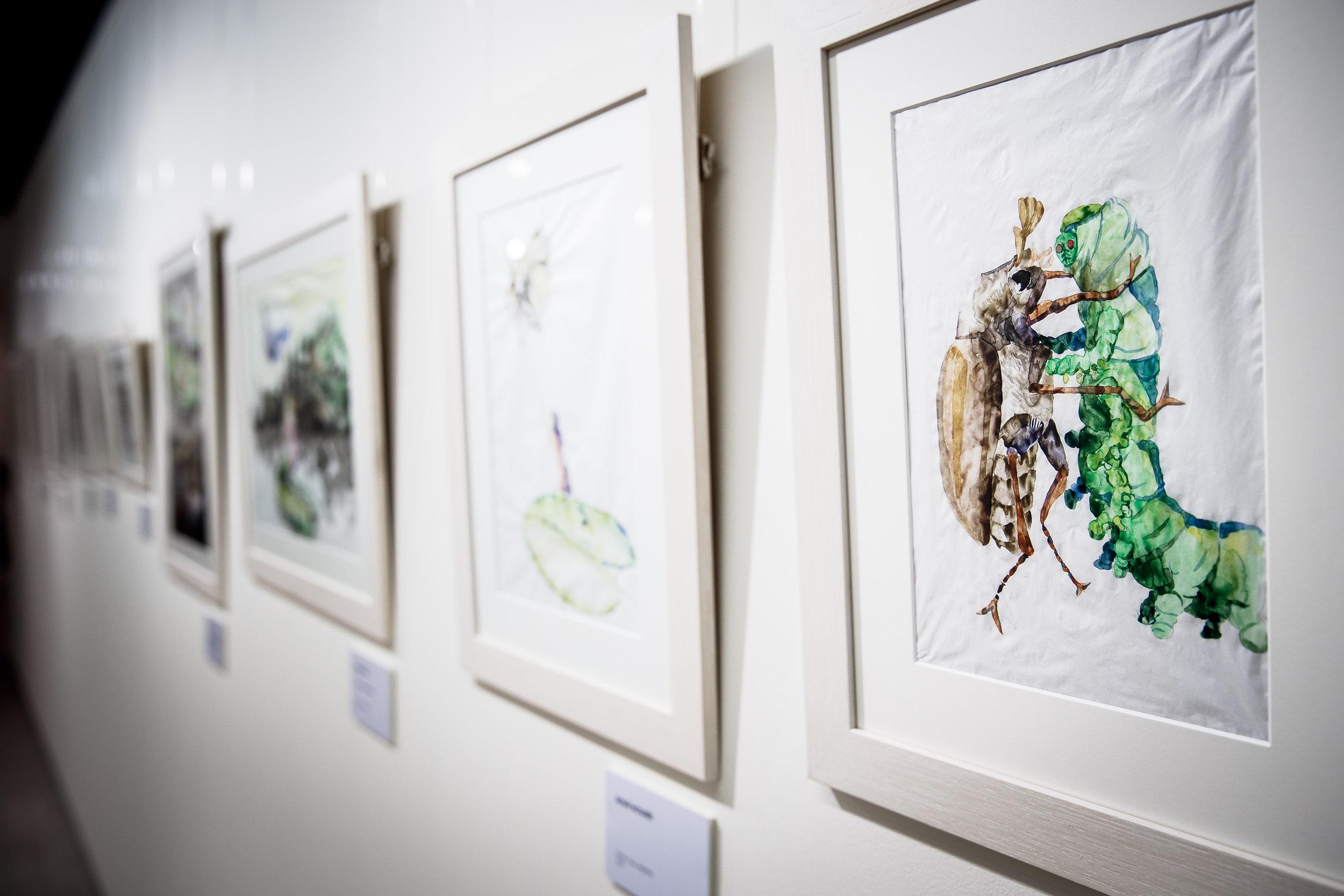 Alexey Buldakov exhibition2.jpg
