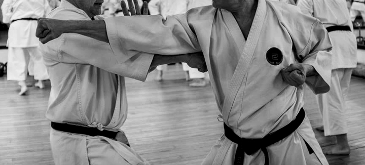 Goju-Ryu Karate Shoreham_Image 004