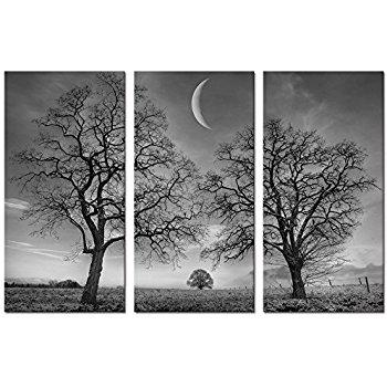 new moon triptych BnW.jpg