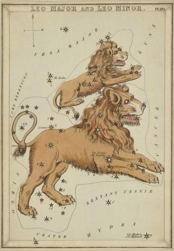 """Leo """"Urania's Mirror"""""""