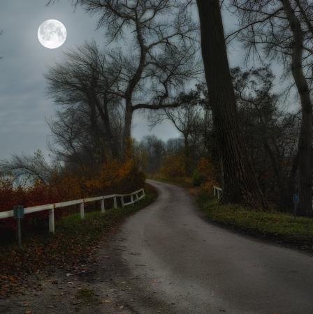 Full Moon path.jpg