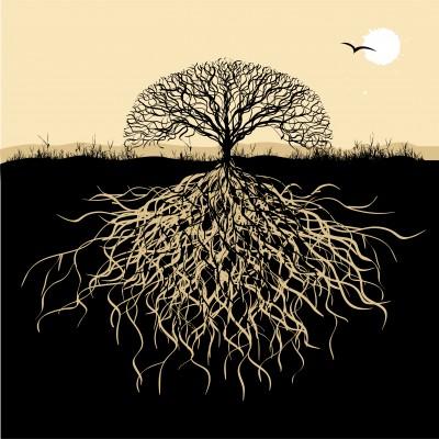 treeOfLife_kudryashka.jpg