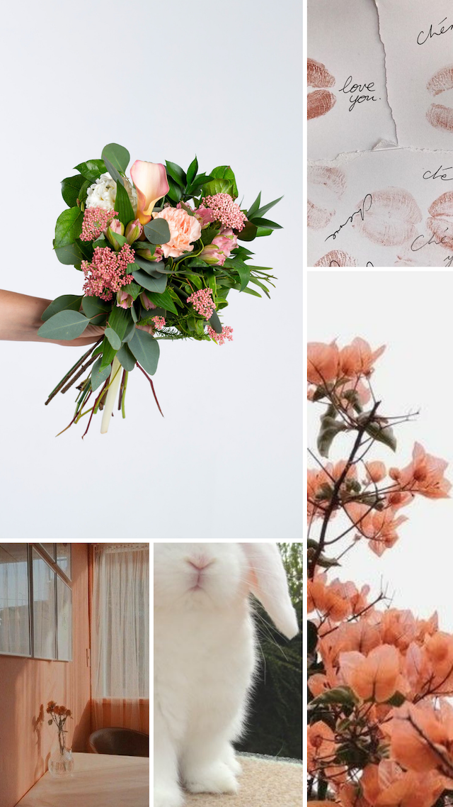 Petalfox Flowers May 6 - Moodboard