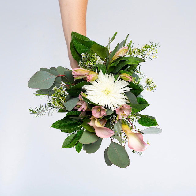 Petalfox Flowers May 13