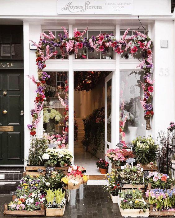 Moyses Stevens , London, England