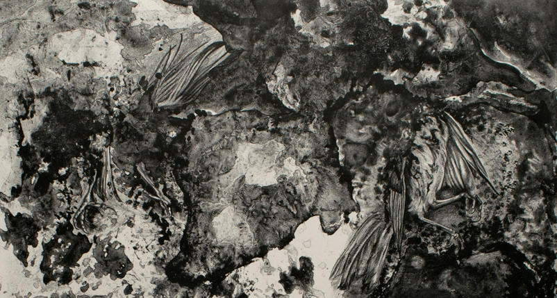"""Detail of  For The Birds    2017  Crayonstone Lithograph  22""""x30"""""""
