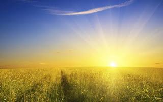 sunshine-wallpaper_1920x1200.jpg