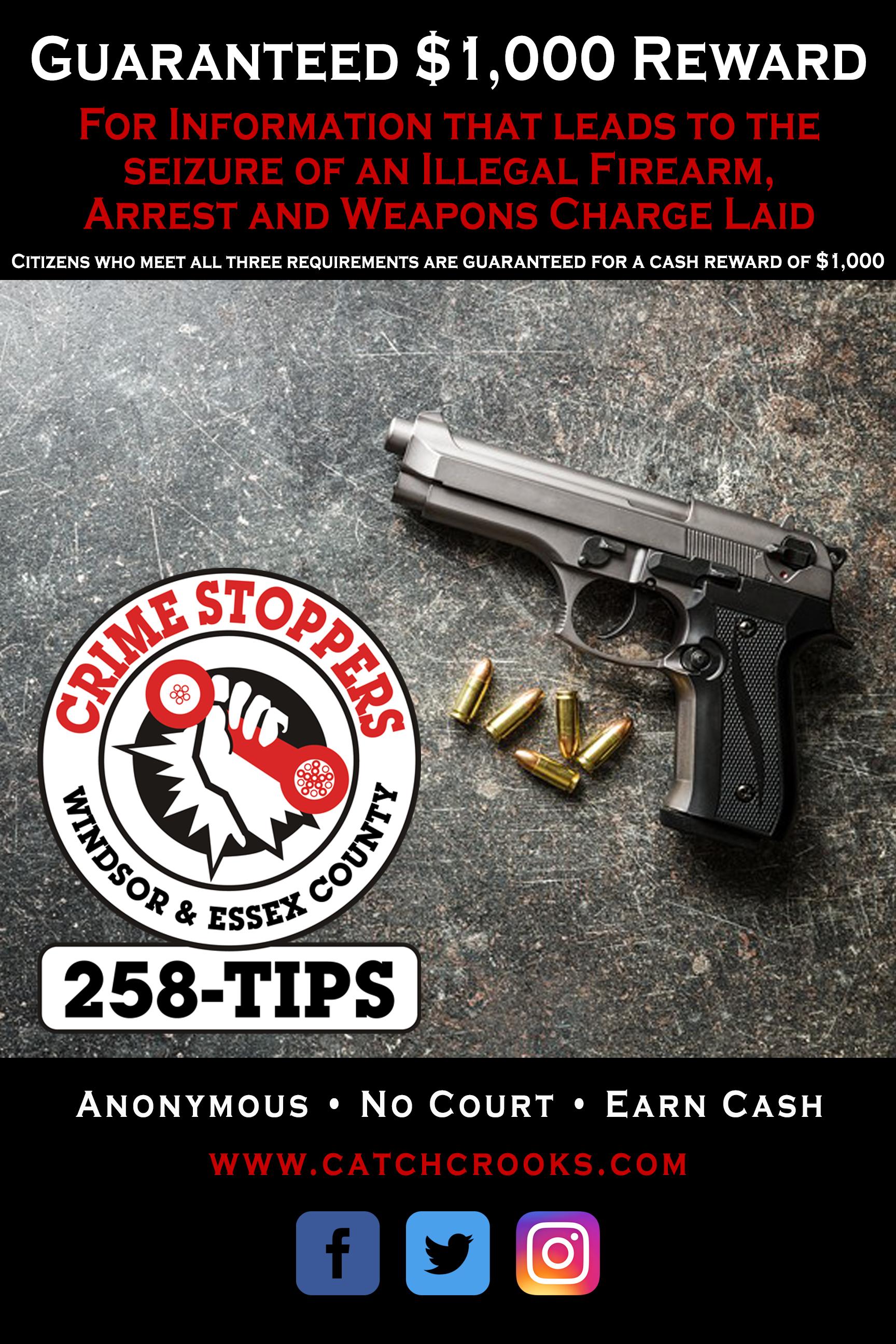 Firearm Campaign 2019.jpg
