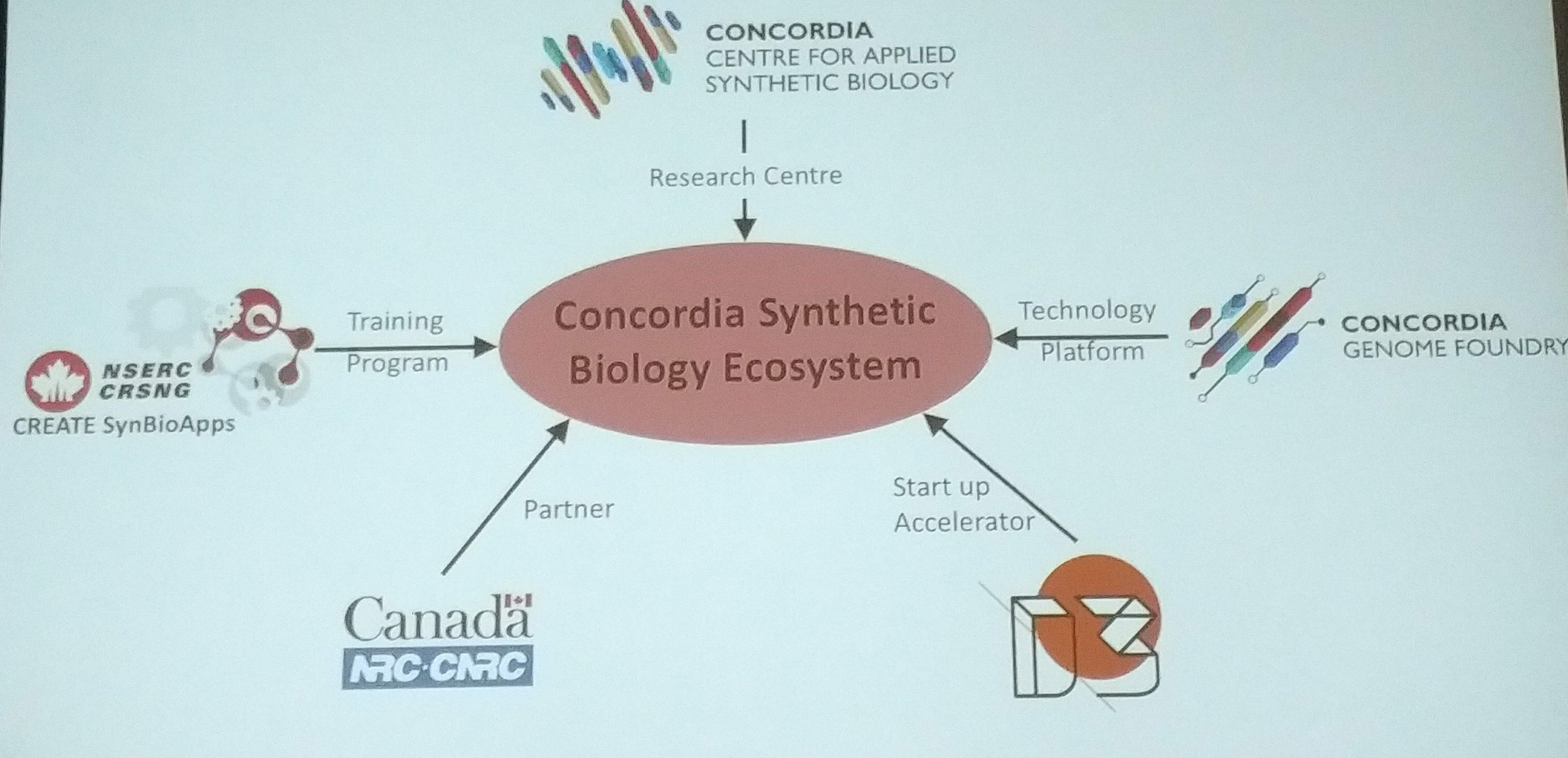 Vincent Martin presents on the exciting synbio ecosystem being developed at Concordia University.  (Photo by Benjamin Scott)