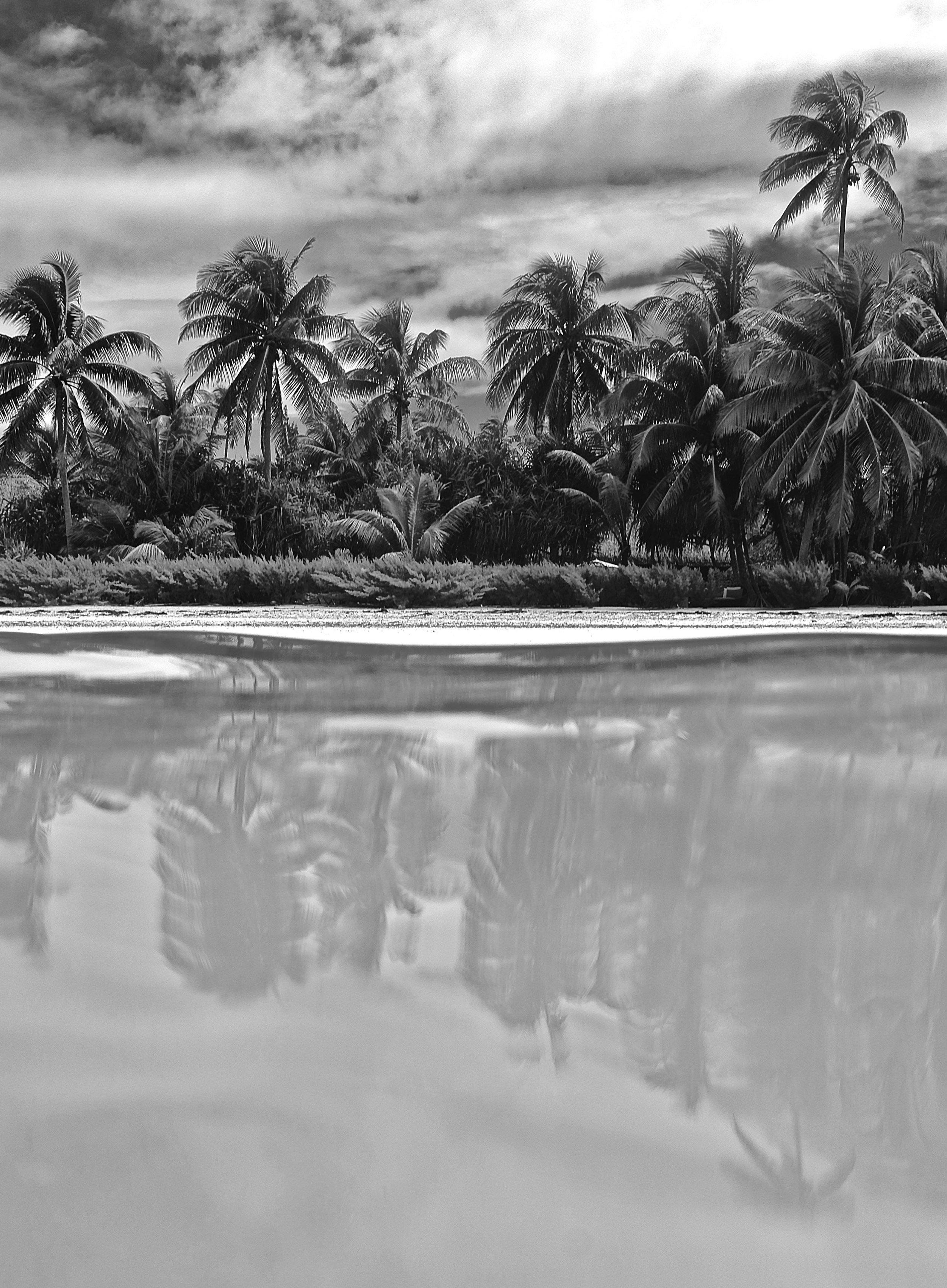 """Brando's Dream"" ~ Mo'orea, French Polynesia ~ no.37"