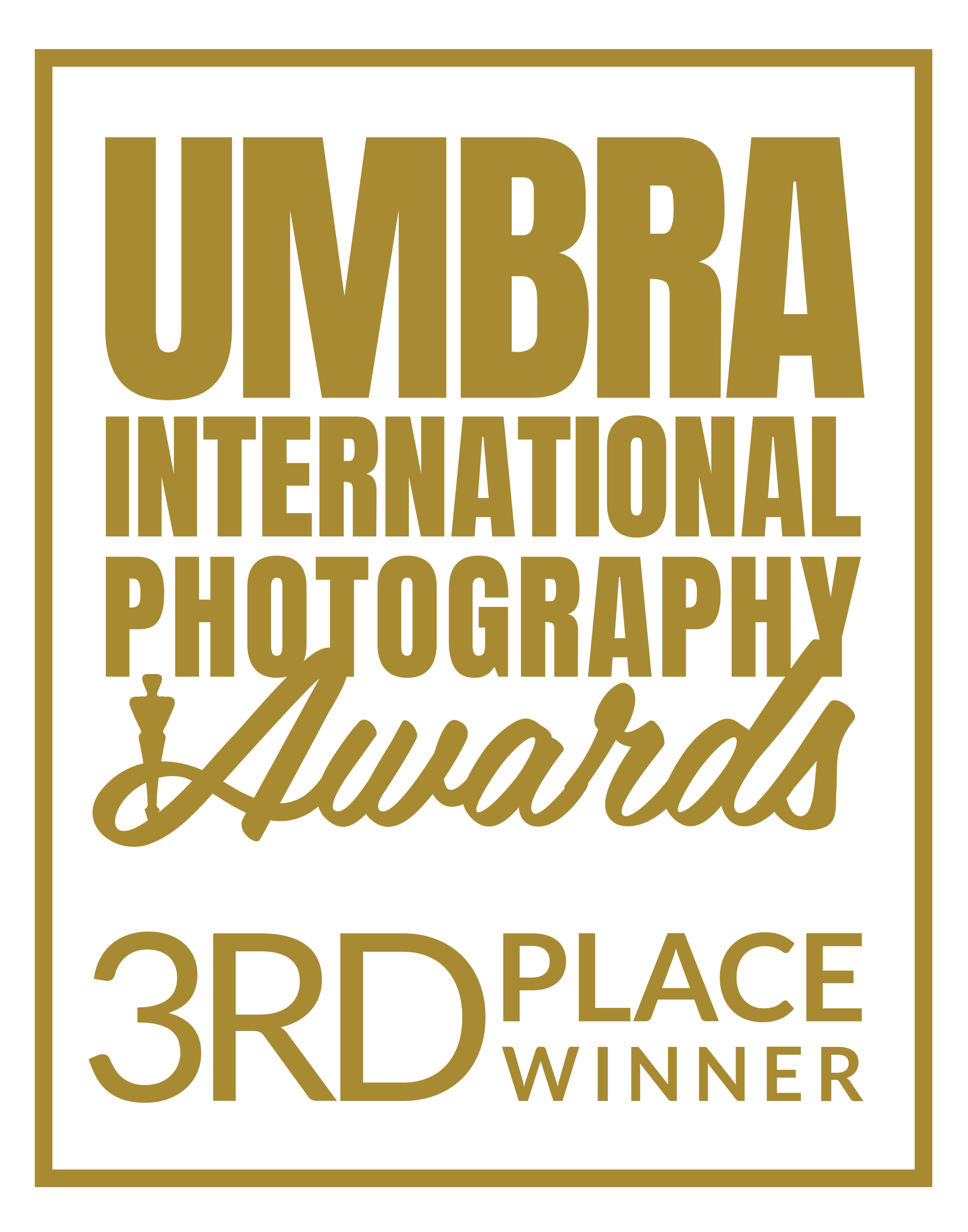 03 UMBRA AWARD SEAL_3RD PLACE WINNER_PNG.png