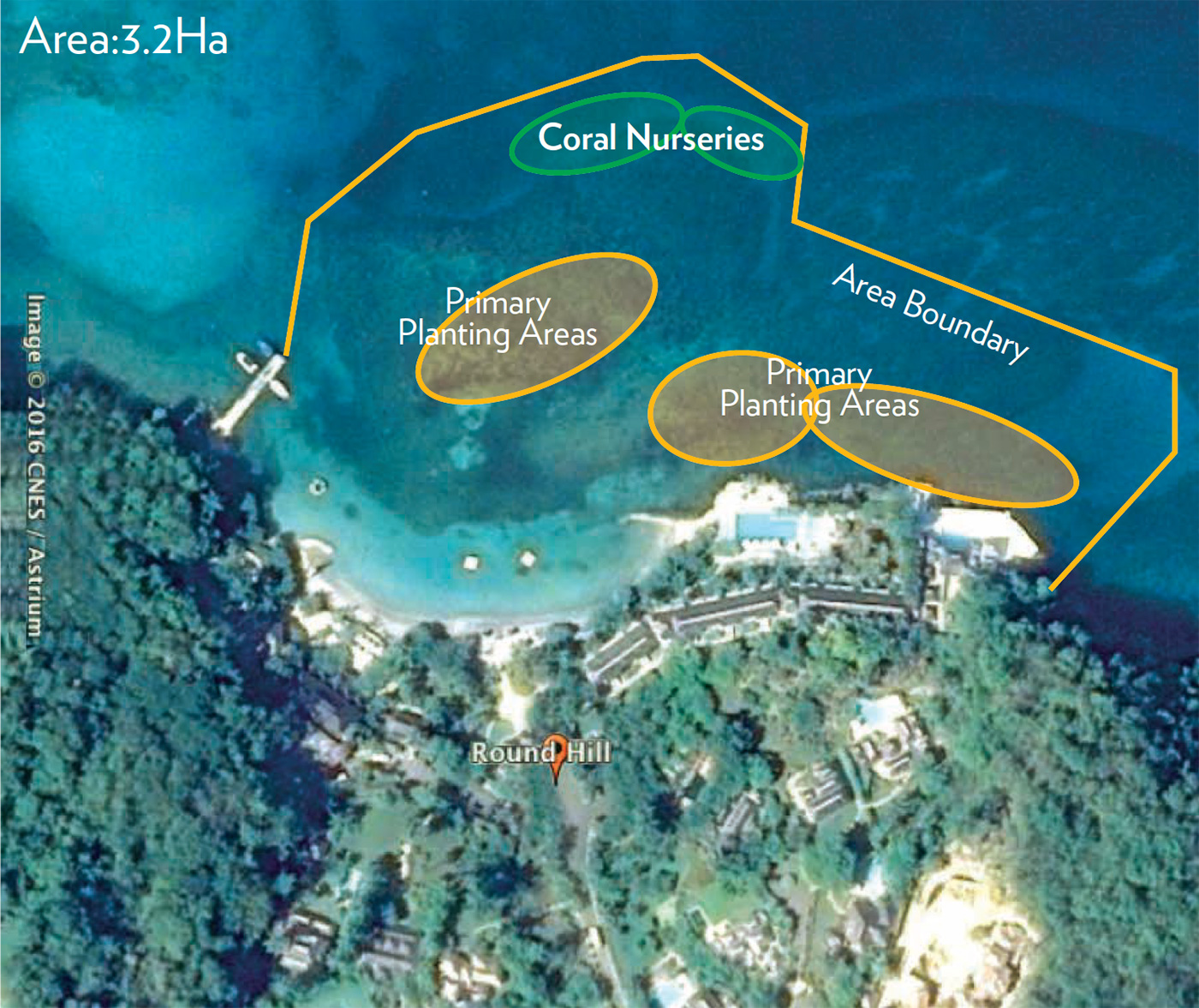 Round Hill Hotel's Local Reef Map