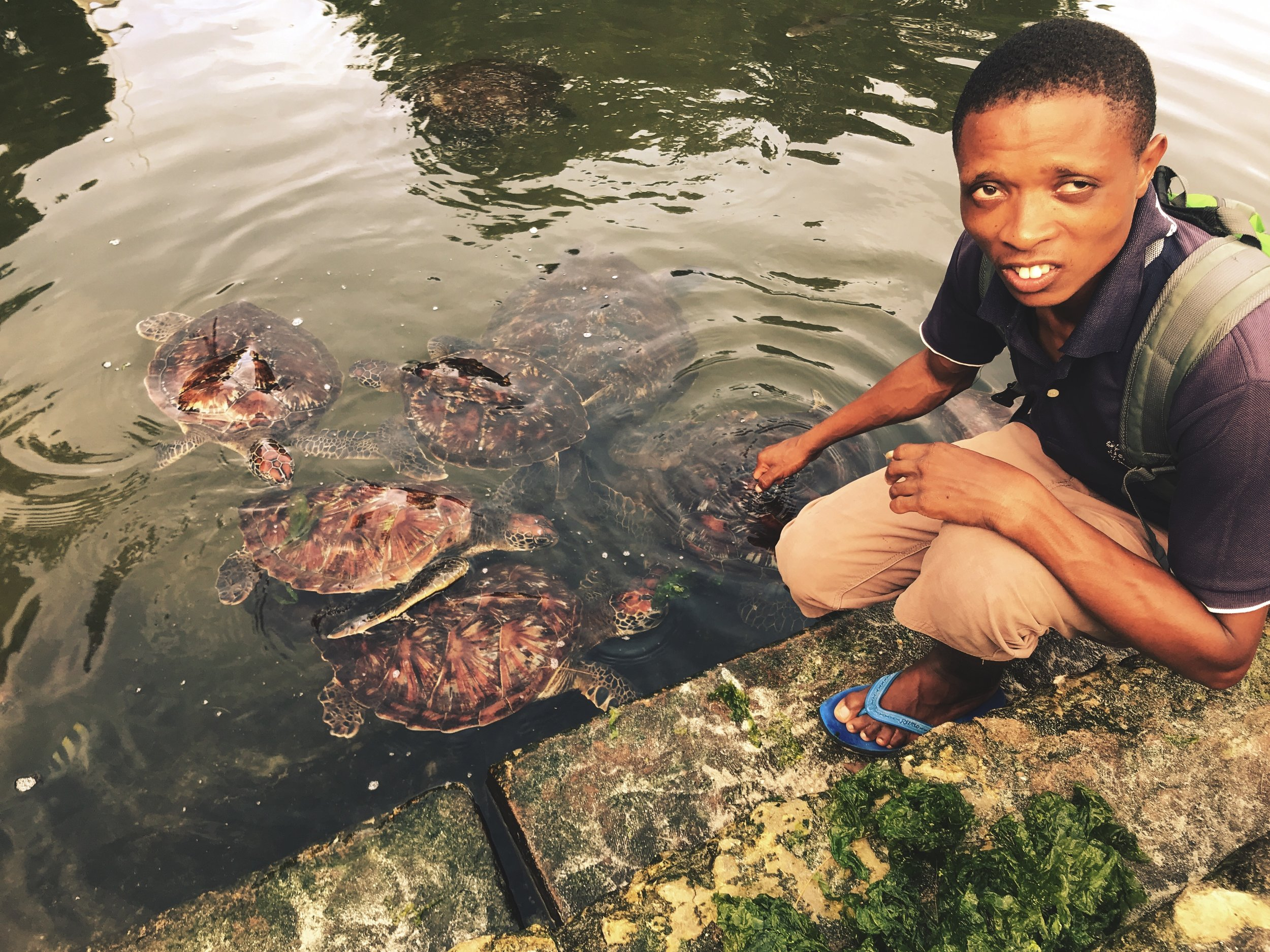 Moses William with sea turtles almost ready to be released into the ocean.